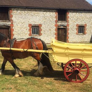 Horse Drawn Carts and Wagons