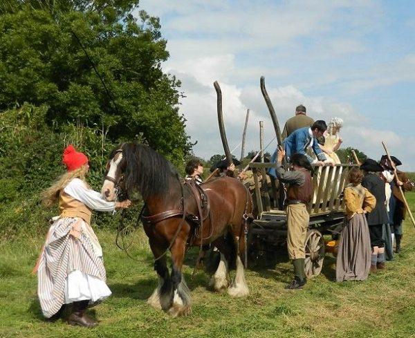French Revolution Costumes- Magna Carta- TV